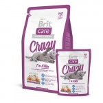 brit-care-cat-crazy-i-m-kitten