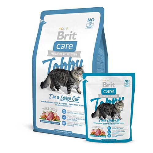 brit-care-cat-tobby-i-m-a-large-cat