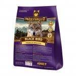 wolfsblut-black-bird